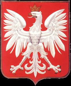 orzel_kaminskiego_projekt